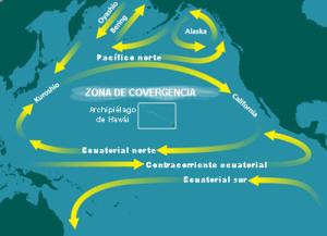 North_Pacific_Subtropical_Convergence_Zone-es