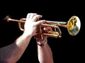 trompetero_2461028