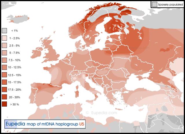 mtDNA-U5-map