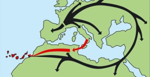 colonización canarias
