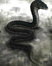 Basilisco reptiliano