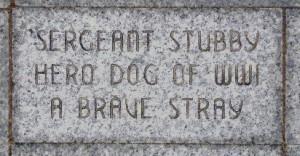 Placa Stubby