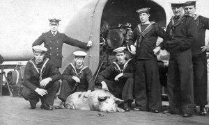 Tirpitz, uno más de la tripulación