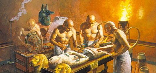proceso momia
