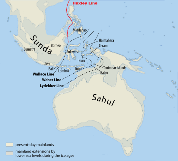 Australasia edad hielo